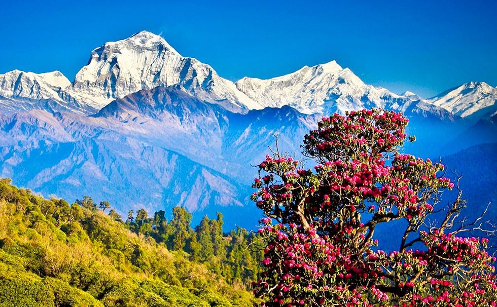 Népal : les chaînes de montagnes Everest, Lhotse et Makalu