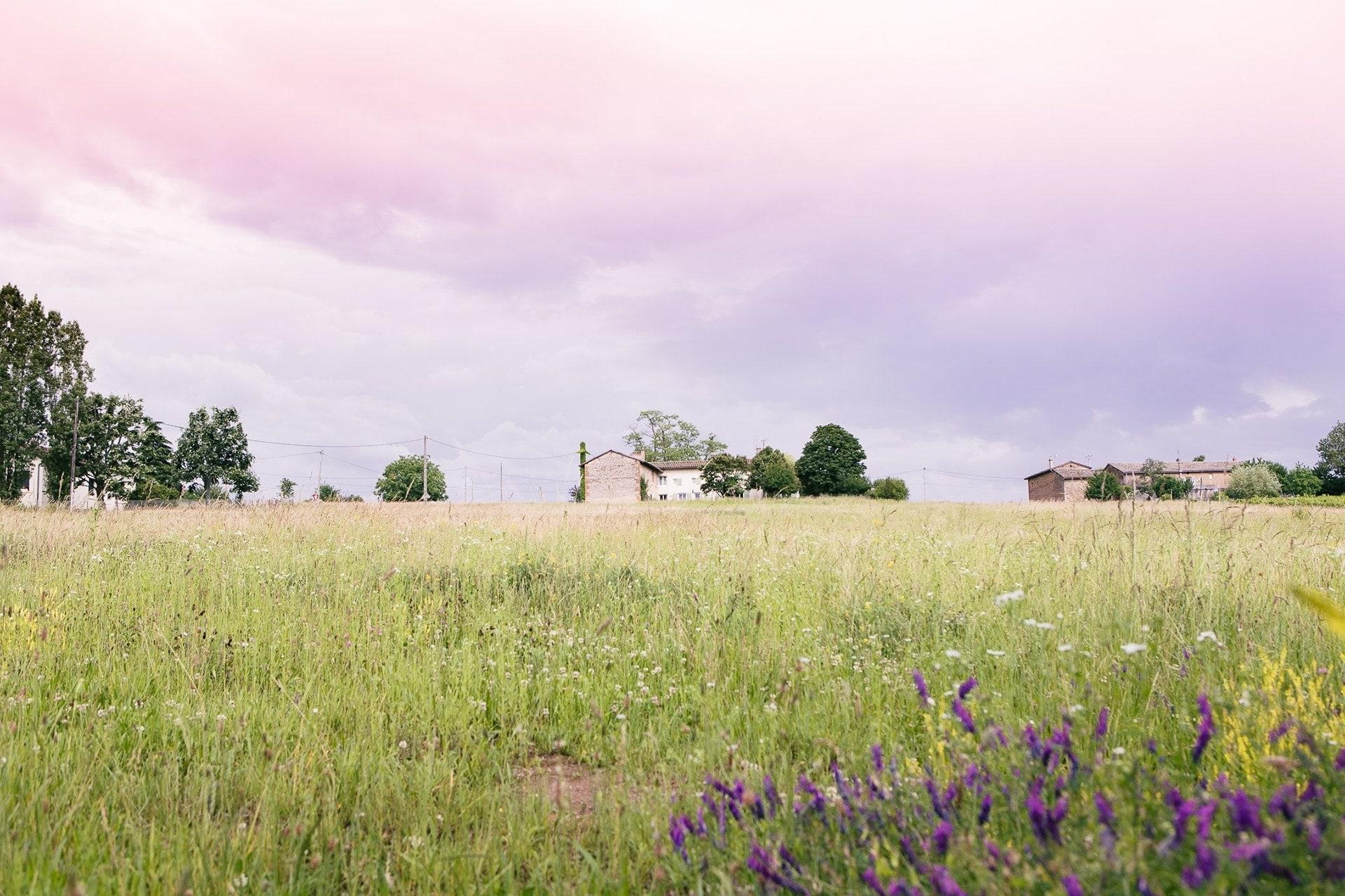 maison dans un champ dans le beaujolais des pierres dorées
