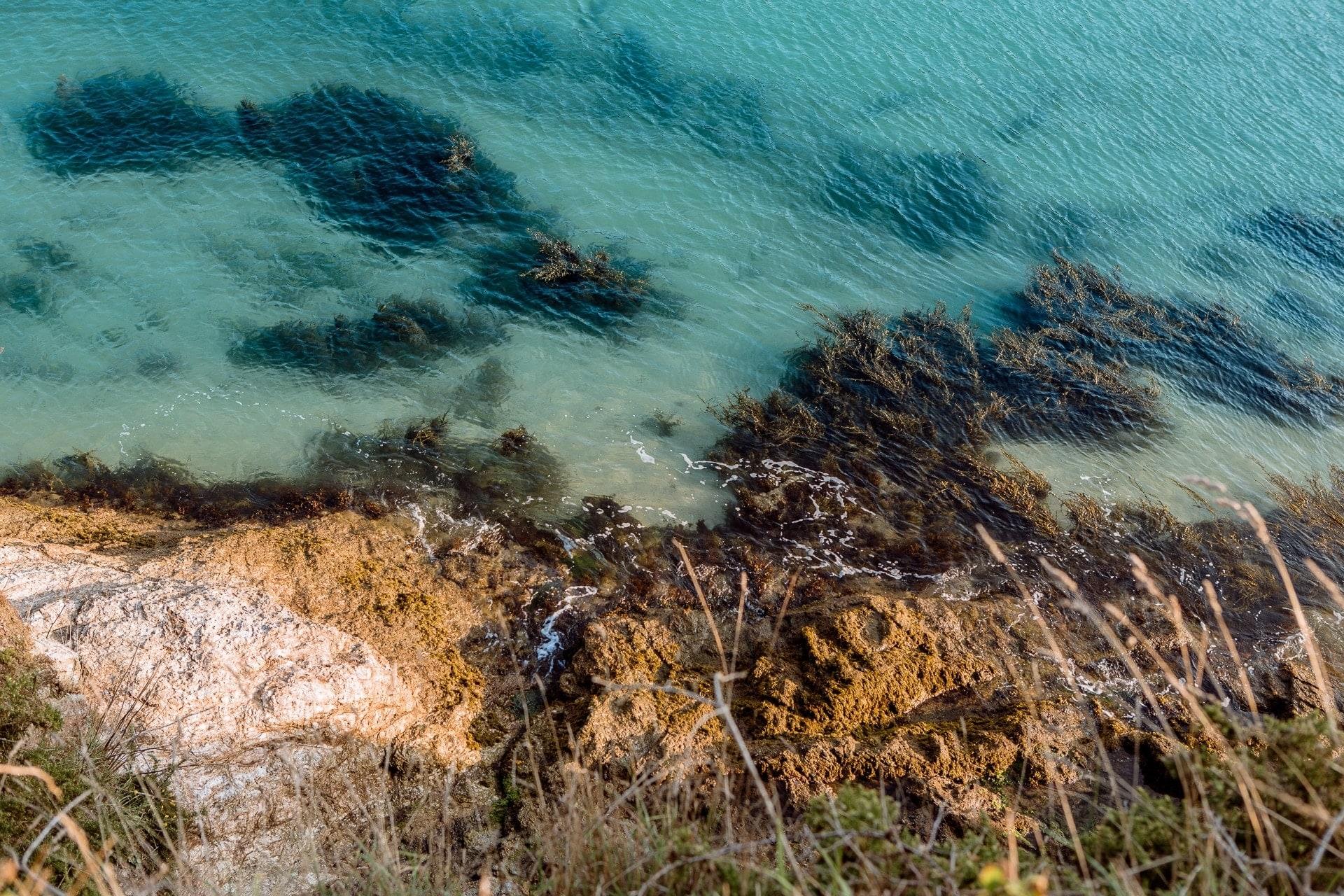 Les eaux limpides de Belle-Île-en-mer