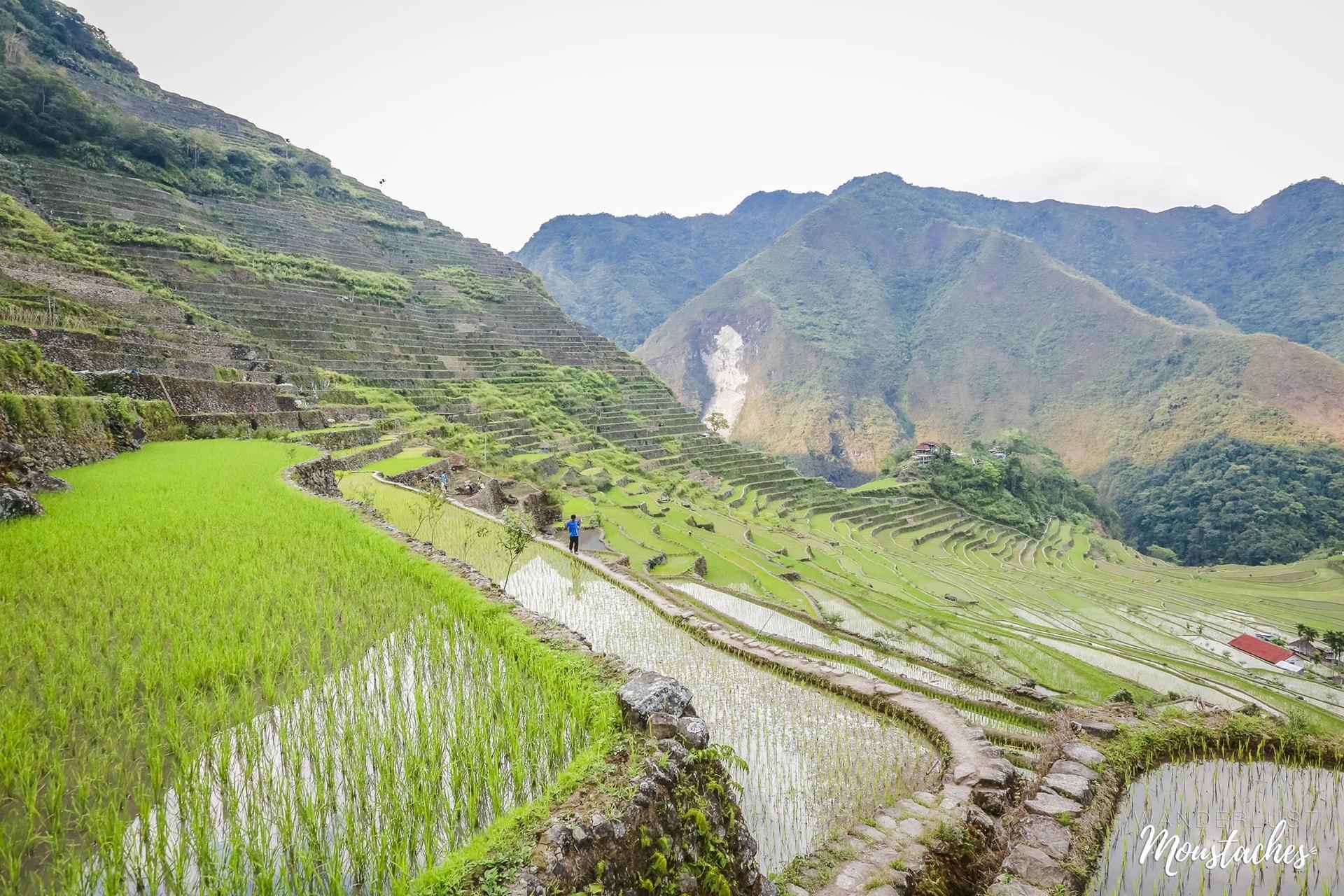 Les rizières en terrasse de Batad aux Philippines