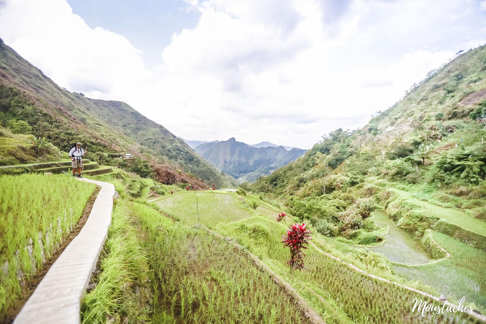 Sur le chemin du retour du trek, en plein milieu des rizières, aux Philippines